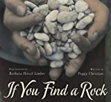 img - for If You Find a Rock book / textbook / text book