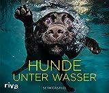 Hunde unter Wasser Rezessionen