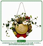Tonari no Totoro hanging planter Mei straw hat