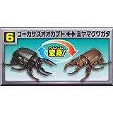 変身昆虫カブトクワガタ第3弾 新種捕獲! [6.コーカサスオオカブト⇔ミヤマクワガタ](単品)