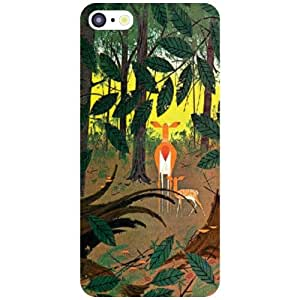 Apple iPhone 5C Back Cover - Fabulous Designer Cases