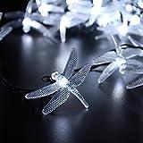 lederTEK Solar Christmas Lights 19.7ft 6m 30 LED 8 Modes Solar Light String Dragonfly Solar Fairy String Lights for Outdoor - Gardens - Homes - Wedding - Christmas Party - Waterproof (30 LED White)