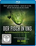 Image de Der Fisch in uns