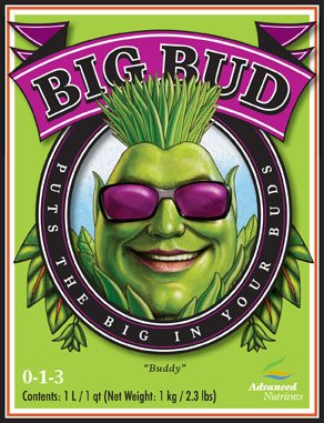 Big Bud Liquid by Dr. Hornby 1 Liter