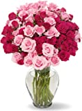50 Blooms of Pink Spray Roses without Vase