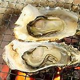 [訳あり] 焼き牡蠣用殻付きカキ 30入 伊勢の国 浦村 から 冬の味覚 旬の味 パーティーにも ランキングお取り寄せ