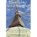 The Hospital at the End of the Worldby Joe Niemczura