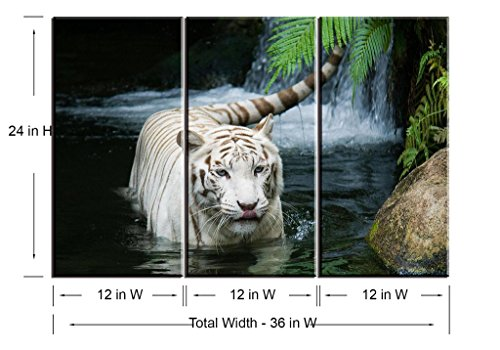Piy Painting W743 White Tiger In The Lake Canvas Print For Bedroom Living Room 3 Panels Framed