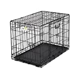 Midwest Homes for Pets Ovation Double Door Dog Crate, 24-Inch