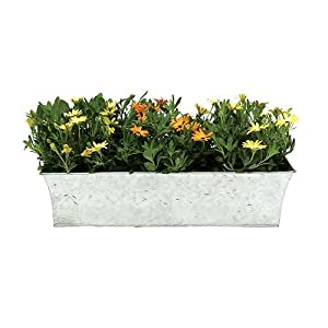 Flower Box Designs Co Uk