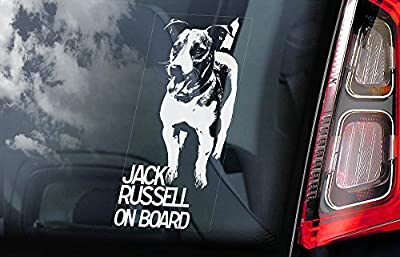 Jack Russell Terrier - Car Window Sticker - Dog Sign - Internal Reverse Printed - V01