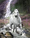 Bob Langrish - Waterfall - White Horse Photo Poster