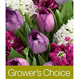 Grower\'s Choice