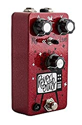 Dr. Scientist Sounds Mini Reverberator from Dr. Scientist Sounds