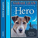 Hero Audiobook by Sarah Lean Narrated by Huw Parmenter