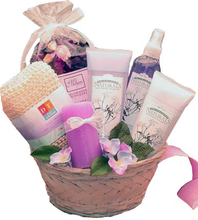 Lavender Bliss Bath and Body Gift Basket, Spa Gift Set