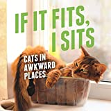 If It Fits, I Sits: Cats in Awkward Places (English Edition)
