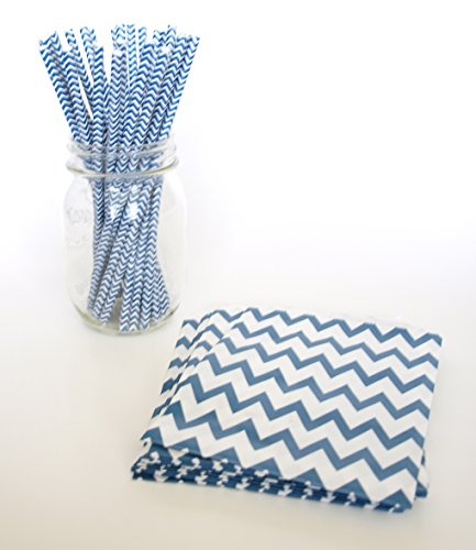 Striped Party Straws, Kids Party Favor Ideas, Straight Straws, Navy Blue Treat Bags, 2 Combo Party Supply Kit - Blueberry Navy Chevron front-701040