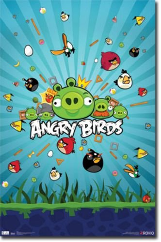 Angry Birds - Group 22