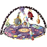 Lamaze Symphony Motion Gym, Space (Discontinued by Manufacturer)