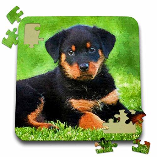 Rottweiler Puppy Jigsaw Puzzle10 x 10 Inchesby Doreen Erhardt