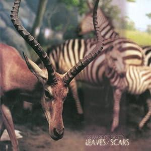 Leaves/Scars