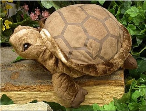 "Wishpets 10"" Tortoise Plush Toy - 1"