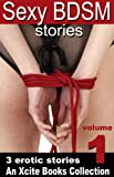img - for Sexy BDSM Stories - Volume One - An Xcite Books Collection book / textbook / text book