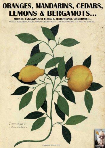 Luca Stefano Cristini - Oranges, mandarins, cedars, lemons and bergamots...