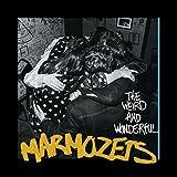 Weird & Wonderful Marmozets