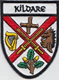 County Kildare Ireland Irish Flag Embroidered Patch Badge