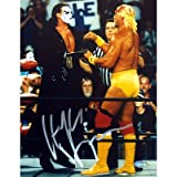 Steiner Sports Hulk Hogan Vs Sting Autographed 8-by-10-Inch Photograph