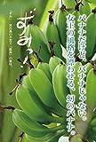 ゴールデンスウィート島バナナ10kg