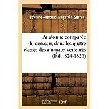 Anatomie Comparee Du Cerveau, Dans Les Quatre Classes Des Animaux Vertebres (Ed.1824-1826) (French Edition)