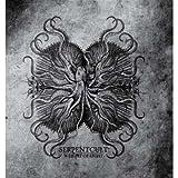 Weight Of Light by Serpentcult (2008-10-27)