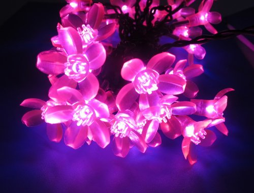 Esky® 32.8ft 100 LED Super Bright Waterproof Colorful Color Changing Cherry Led Blossom/Led Strip Light Kit with 8 Controllable Modes for Holidays, Parties, Gardens, Wedding and other Decorations(100V-130V AC)