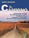 Il CAMMINO: A piedi, da Lourdes a Santiago di Compostela (Italian Edition)
