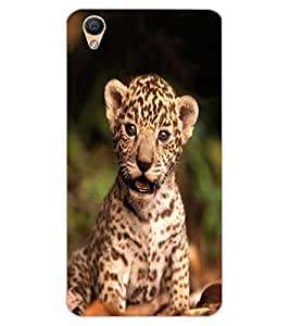 ColourCraft Cute Cub Design Back Case Cover for OPPO R9