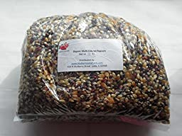Popcorn Seeds, Kernels, USDA Certified Organic, Non-GMO, Multi-Colored, (Calico or Rainbow), 10 lbs (ten pounds), (for eating not planting), ~ BULK.