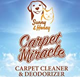 Carpet Miracle - Carpet Cleaner and Deodorizer Solution for Hoover, Bissell, Rug Doctor, Kenmore (32FL OZ)