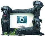 Black Labrador Retriever Dog 4'' x 6'' Photo Frame