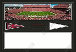 South Carolina Gamecocks Williams-Brice Stadium & Your Choice Of Stadium... by Art and More, Davenport, IA