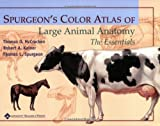 Spurgeons Color Atlas of Large Animal Anatomy: The Essentials