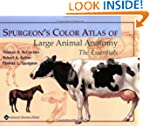 Spurgeon's Color Atlas of Large Anima...