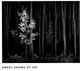 Ansel Adams at 100 (0821225154) by Ansel Adams