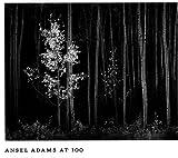 echange, troc John Szarkowski, Ansel Adams - Ansel Adams at 100