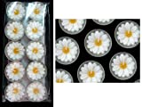 Cleopatra Spa - Maguerite Daisy Flower Tealight Candles Garden Decor - (Pack of 10 Mini Aroma Tea Light)