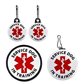 RED SERVICE DOG IN TRAINING Medical Alert Patch Tag Zipper Pull Charms