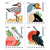 Coastal Birds Stamps Booklet of 20 X POSTCARD Forever U.S. Postage Stamps USPS NEW