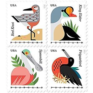 coastal birds stamps roll of 100 x postcard forever u s postage stamps usps new. Black Bedroom Furniture Sets. Home Design Ideas